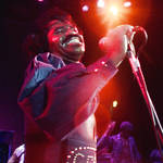 16 morceaux de James Brown en concert